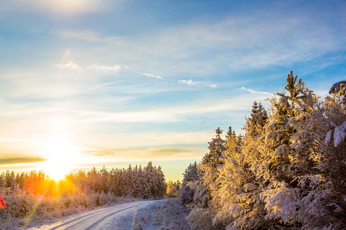 Landschap van Zweden